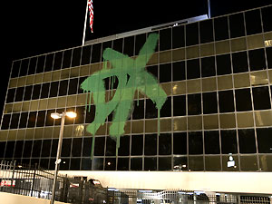 DX SPRAY PAINT